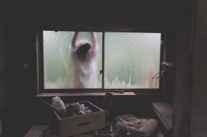 declutter your home checklist